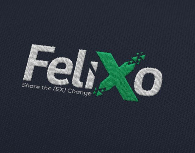 felixo-640x505-1 Felixo FLX Coin Airdrop Fırsatı